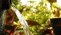 איזון תמיסת ההשקיה