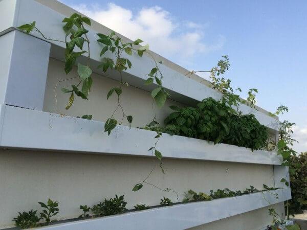 מערכת קיר בחיפוי ברזל מגולוון צבוע לבן- 51 צמחים